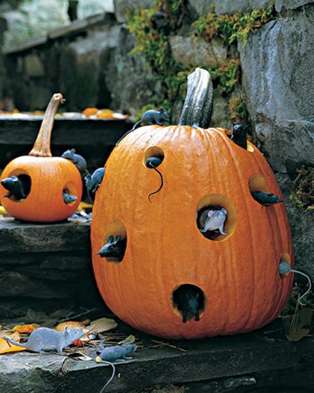 pumpkins-03