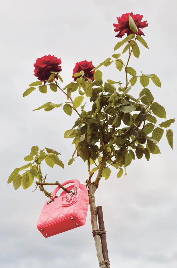 baby_dior_handbag
