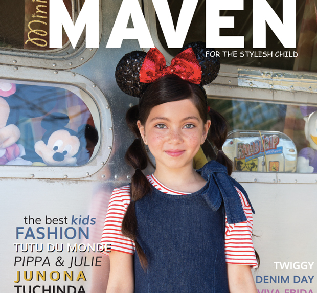 mini-maven_cover